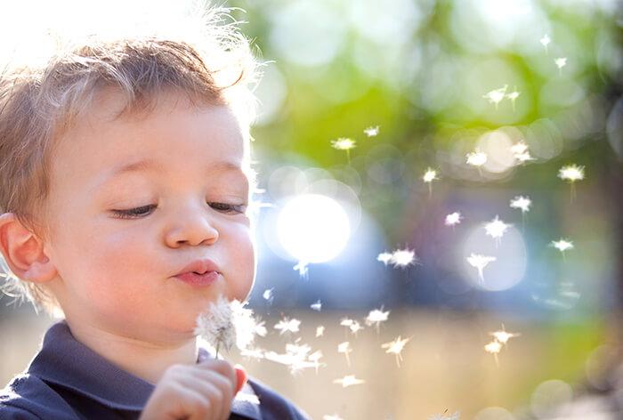Alergie krzyżowe, czyli czy pyłki roślinne mogą wywołać alergię na owoce?